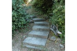 02-Ioannis_74_steps-up
