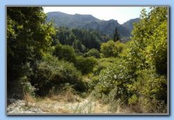the road continius as foot path to Vourliotes (4)