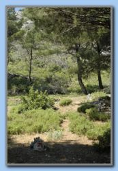 10 min. later we came to the footpath to Castro Louloudas. (10)