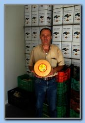 Graviera - The main cheese product presented by the owner Dimitris Vourliotes